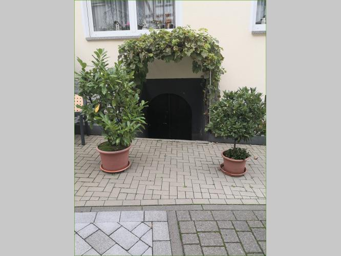 Zugang Keller